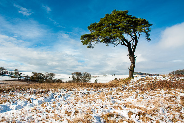 Snow on the Mendip Hills