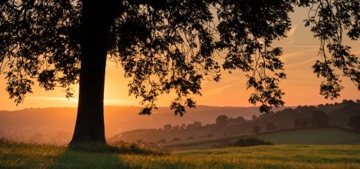 Henton Sunrise