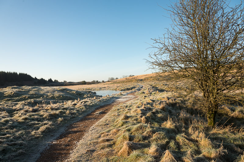 Frosty morning at Priddy Mineries