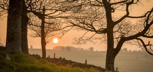 Lynchcombe Sunrise