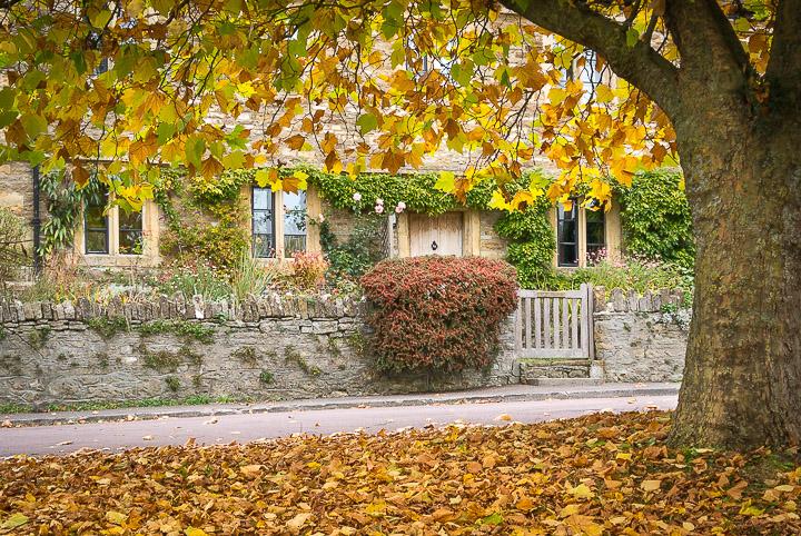 Autumn Cottage - Templecombe, Somerset, UK. ID DSC_0564