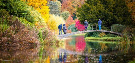 The Garden Lake - Stourhead, Wiltshire. UK. ID 808_1648