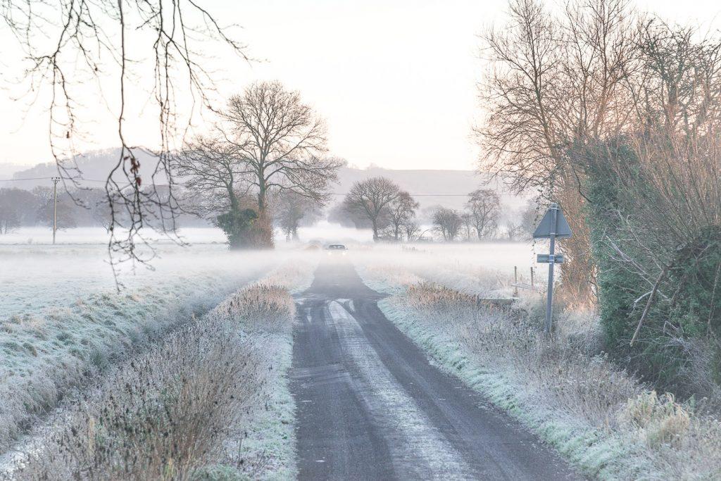 Long Drove - Queens Sedge Moor, Somerset, UK. ID 809_0082