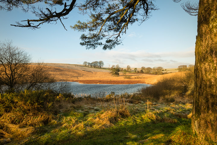Waldegrave Pond - Priddy Mineries, Somerset, UK. ID 809_2452