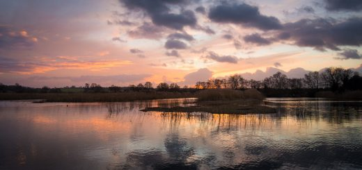 Sunset at Waltons Heath - Somerset, UK. ID 809_2508