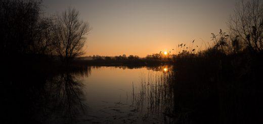 Sunset over Waltons Heath - Ham Wall, Somerset, UK. ID 809_6279