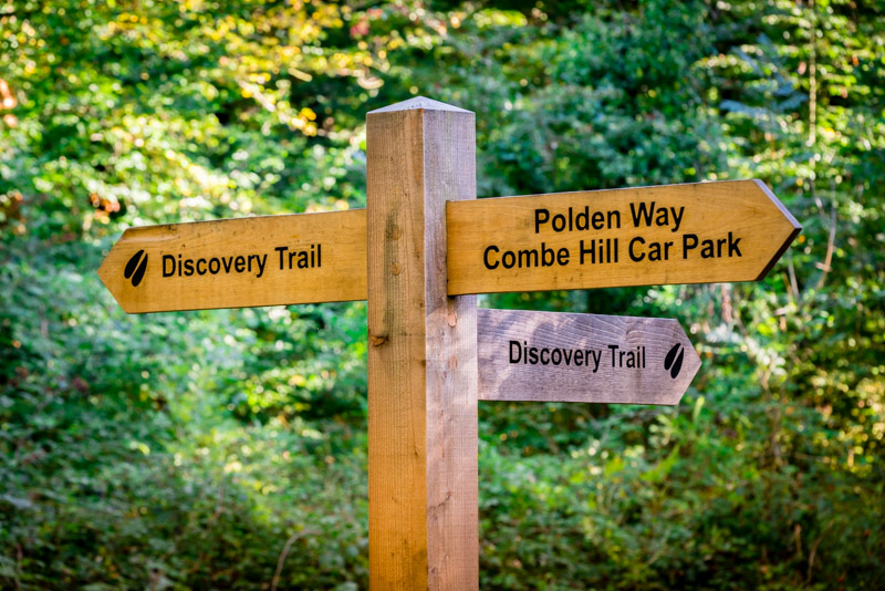 The Discovery Trail - Great Breach Wood, Somerset, UK. ID 808_1206