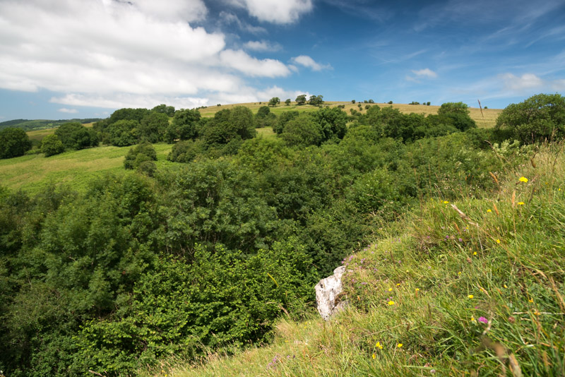 Lynchcombe - Somerset, UK. ID 822_8546