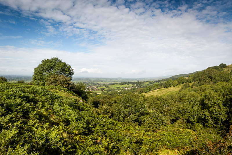Lynchcombe - Somerset, UK. ID lynchcombe_pan17