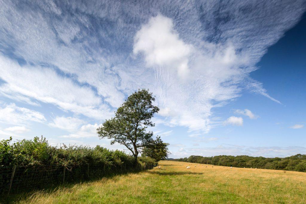 Mendip Skies - Somerset, UK. ID summer_clouds