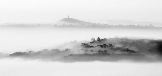 Misty Morning - Deerleap, Somerset, UK. ID 805_0476