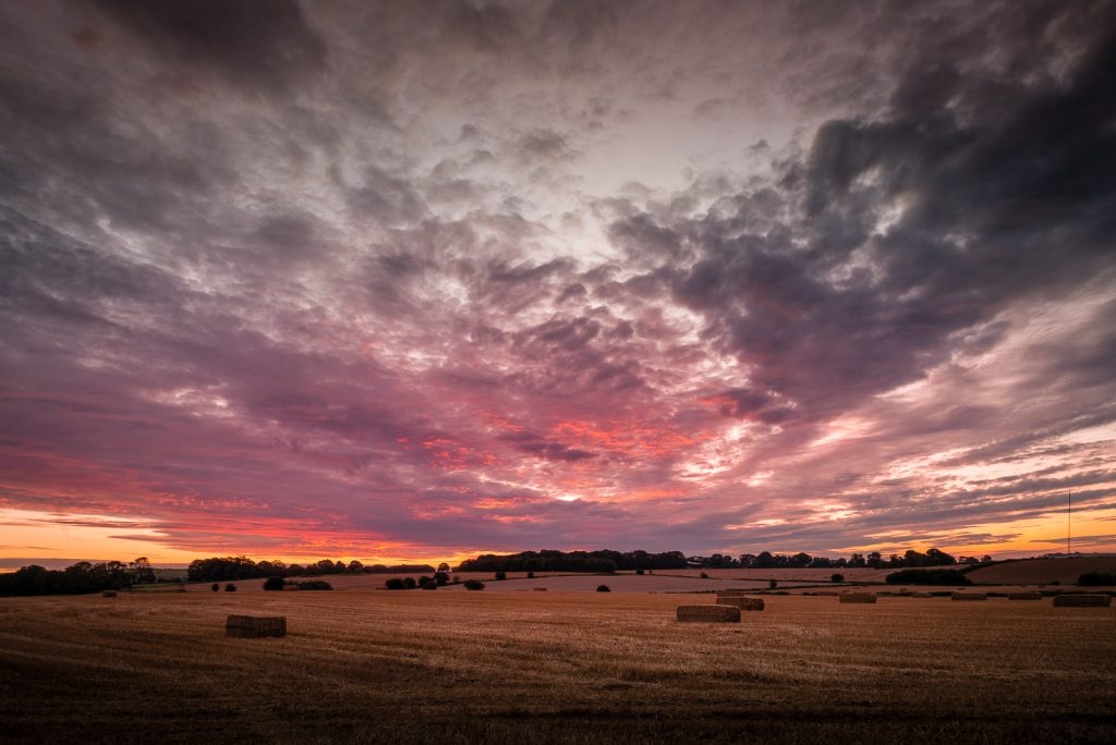 Sunrise - Priddy, Somerset, UK. ID 823_3130