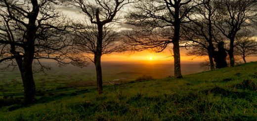 Lynchcombe Sunset - Mendip Hills, Somerset, UK. ID 823_6472