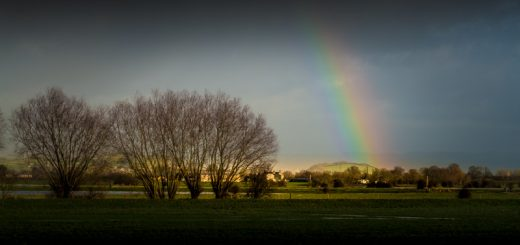 Rainbow over Meare Pool - Meare, Somerset, UK. ID 824_4275