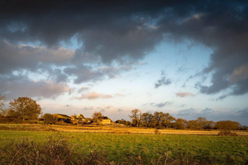 Stileway Farm - Nr Meare, Somerset, UK. ID 824_4330