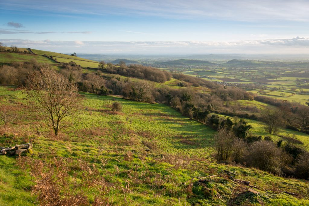 Views across Lynchcombe showing the Lynchets