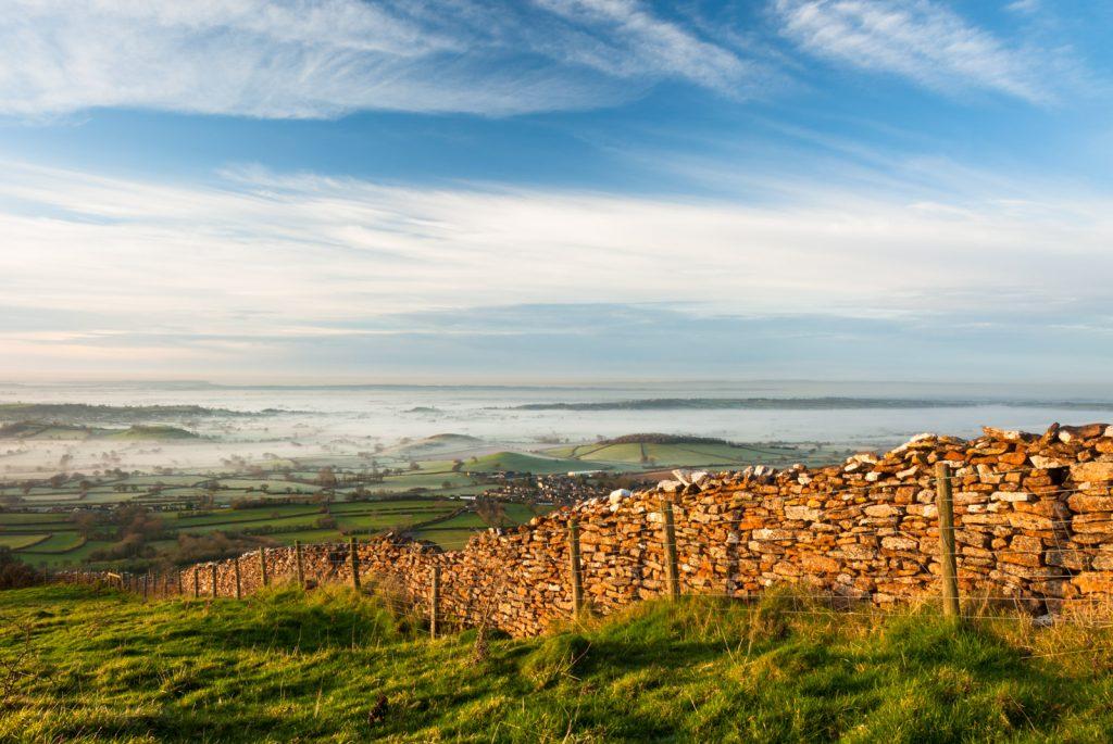 Misty morning at Lynchcombe - Somerset, UK. ID JB3_3740