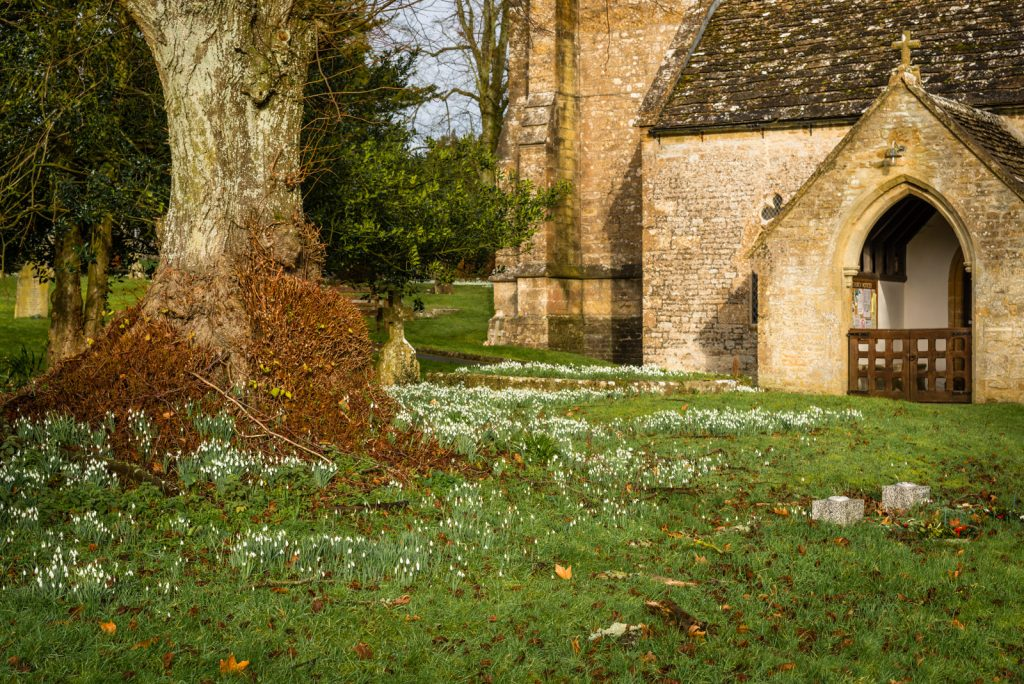 Church of St Peter and St Paul - Charlton Horethorne, Somerset, UK. ID 824_8316