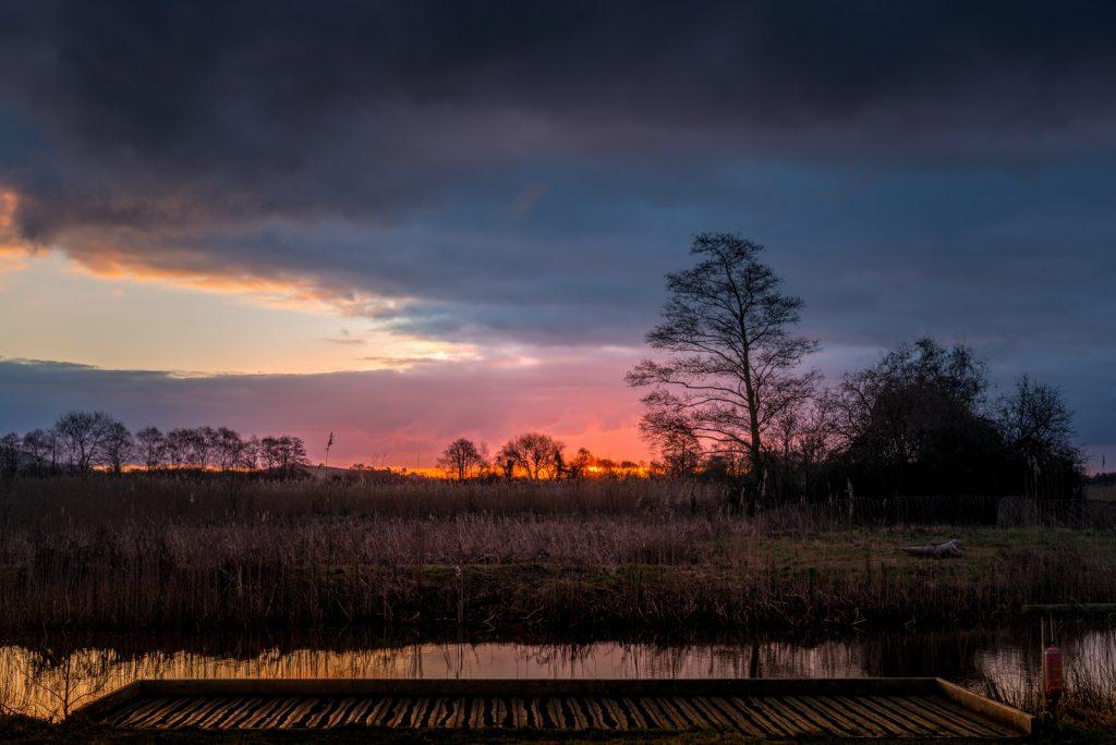 Sunrise - Ham Wall, Somerset, UK. ID 824_9433