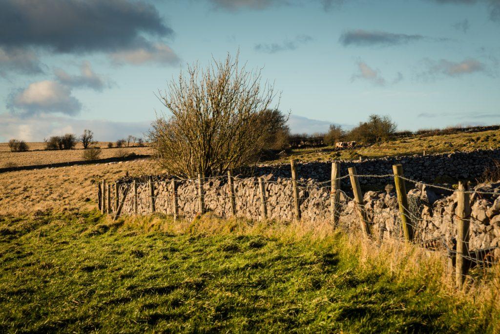 Drystone Wall - Deerleap, Somerset, UK. ID 825_0664