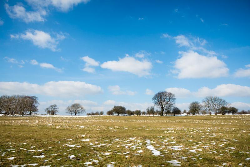 Middledown - Mendip Hills, Somerset, UK. ID 825_7012