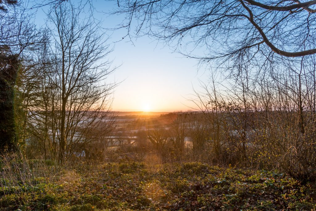 Sunrise - Bratton Seymour, Somerset, UK. ID 825_7958