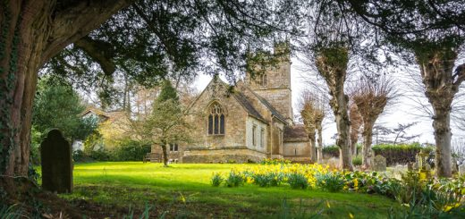 The church of St Thomas a Becket - South Cadbury, Somerset, UK. ID DSC_1083