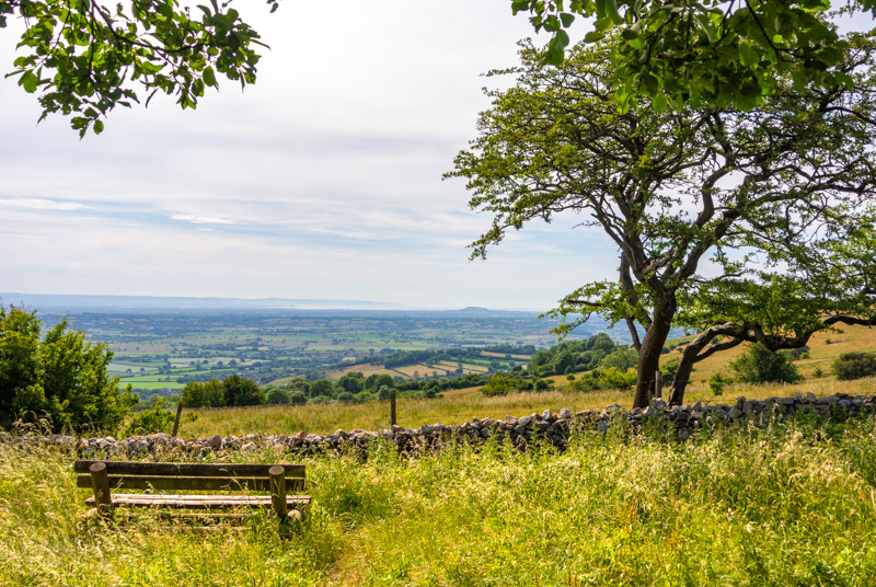 View from a picnic bench - Deerleap, Somerest, UK. ID DSC_3260