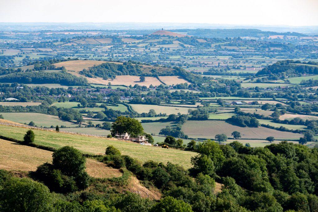 Lynchcombe new neighbours - Somerset, UK. ID IMG_6308