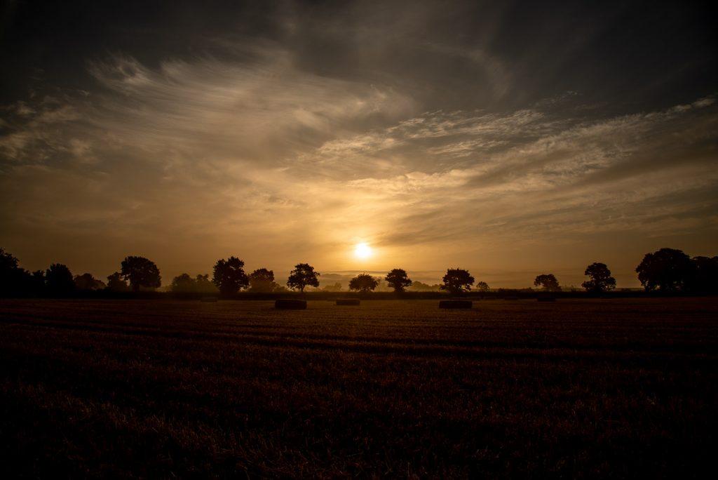 Lamyat Summer Dawn - Somerset, UK. ID 825_6322