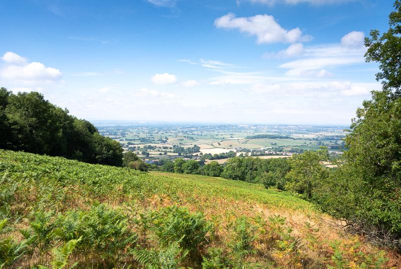 Lynchcombe - Mendip Hills, Somerset, UK. ID DSC_3293