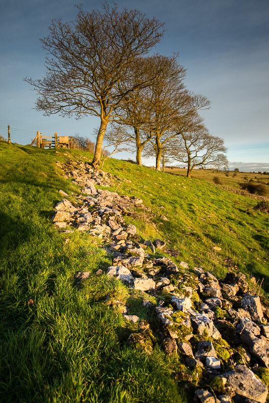 The old stone wall - Lynchcombe, Somerset, UK. ID DSC_5202