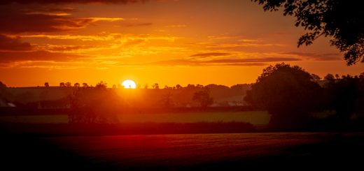 Ridge Road Sunrise - Ridge Road, Shepton Mallet, Somerset, UK. ID 825_8564H