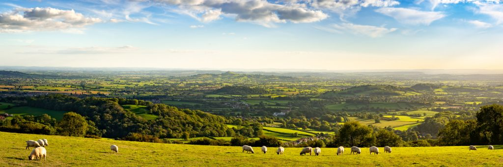 Panorama from the Mendip Hills - Above Wookey Hole, Somerset, UK. ID 825_9738P