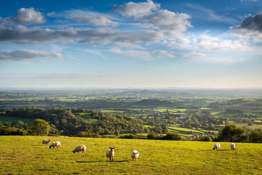 Panorama from the Mendip Hills - Above Wookey Hole, Somerset, UK. ID 825_9799