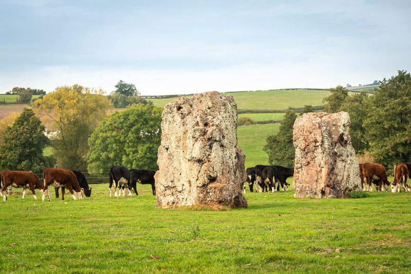 Stone Circle - Stanton Drew, Bath and North East Somerset, UK. ID 826_0863