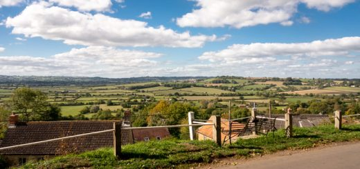 Cucklington - Blackmore Vale, Somerset, UK. ID DSC_3398