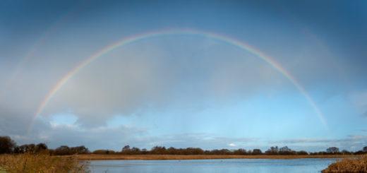 Rainbow - Waltons Lagoon, Ham Wall, Somerset, UK. ID 827_3658