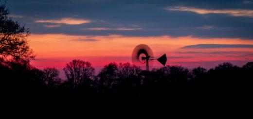 Dawn at Loxtons Marsh - Ham Wall, Somerset, UK. ID 827_5529