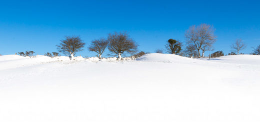 Mendips in snow - Above Wells, Somerset, UK. ID IMG_1399