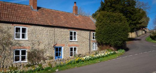Daffodil Cottages - Westbury-sub-Mendip, Somerset, UK. ID IMG_4463