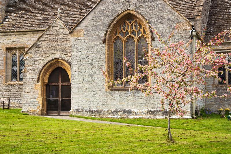 Spring Blossom - Church of All Saints, Kingsdon, Somerset, UK. ID IMG_7616