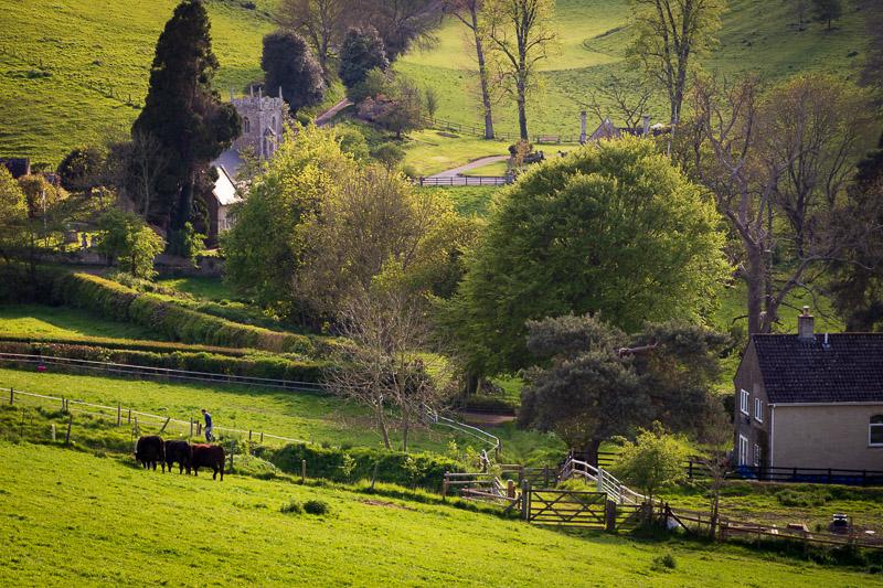 Pitcombe - Somerset, UK. ID IMG_1301