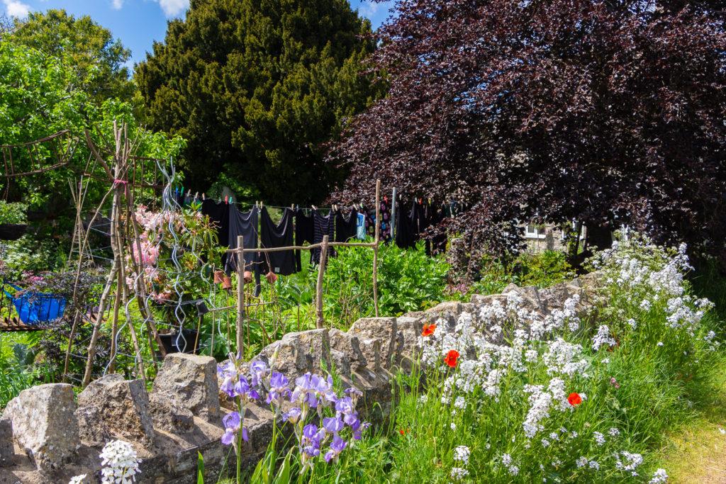 Cottage Garden - Lovington, Somerset, UK. ID IMG_0164