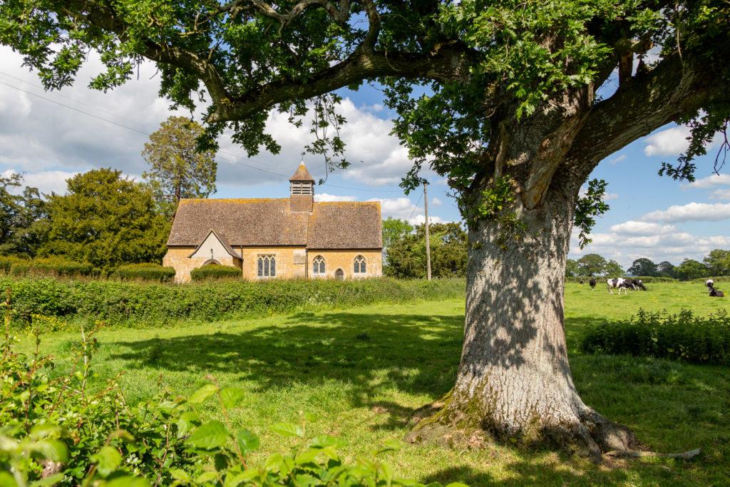 Church of St Mary - Lottisham, Somerset, UK. ID IMG_0536