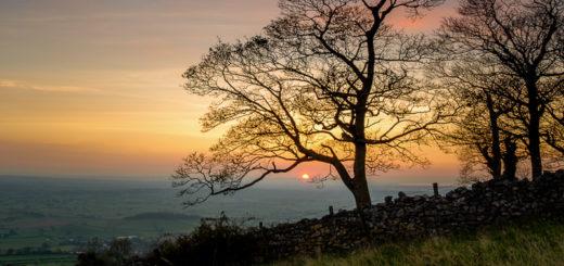 Sunset - Lynchcombe, Somerset, UK. ID JBB_4313