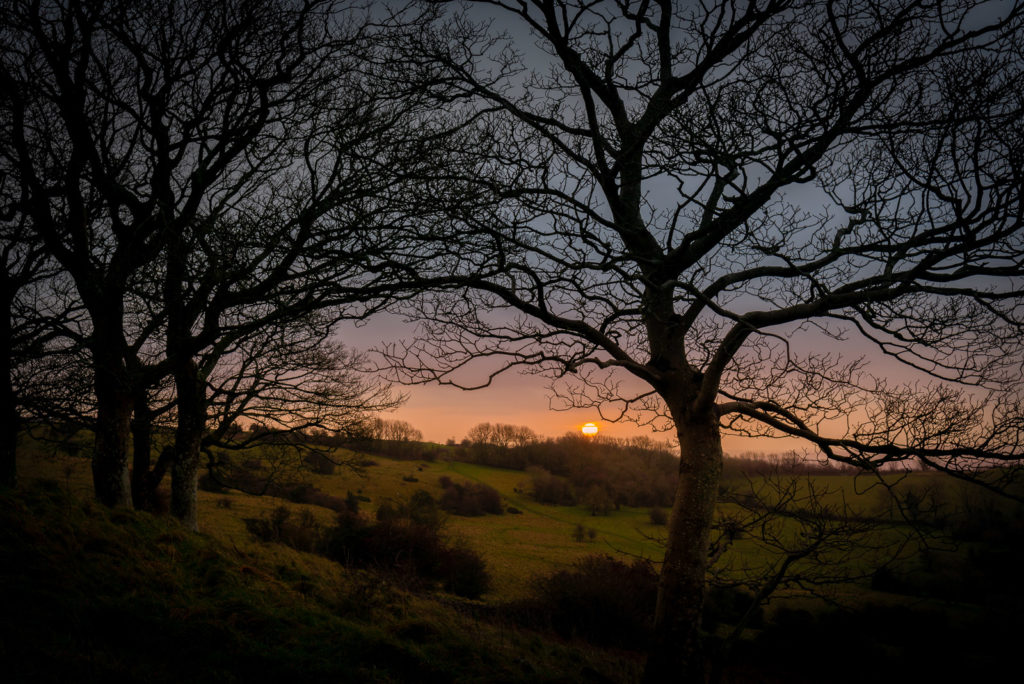 Sunrise - Lynchcombe, Somerset, UK. ID JB1_0364