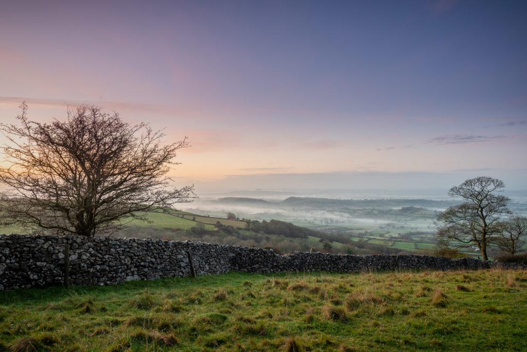 Winter Morning - Cooks Fields, Somerset, UK. ID JB1_4181H