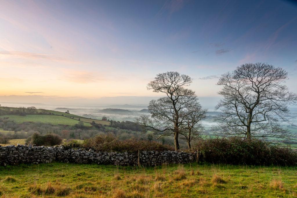 Winter Morning - Lynchcombe, Somerset, UK. ID JB1_4214