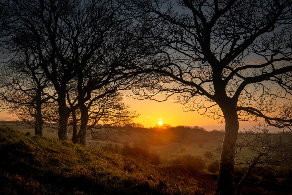 Sunrise - Lynchcombe, Somerset, UK. ID JB1_4277